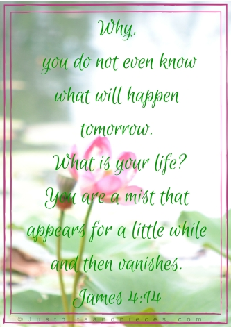 Why, you do not even know what will happen tomorrow. What is your life- You are a mist that appears for a little while and then vanishes.James 4-14