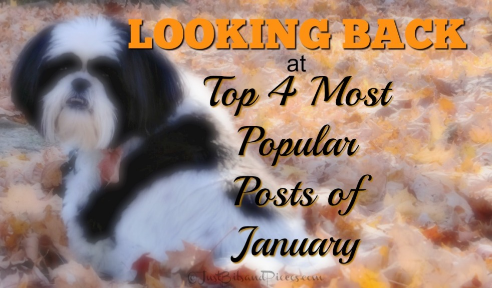 looking back at the top 4 most popular posts of January