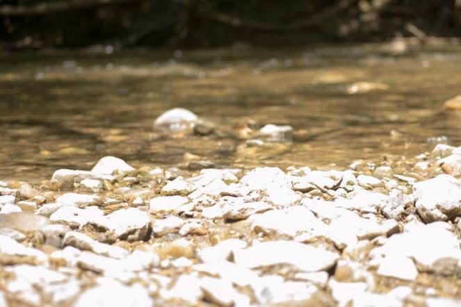 Creeking (3 of 21)