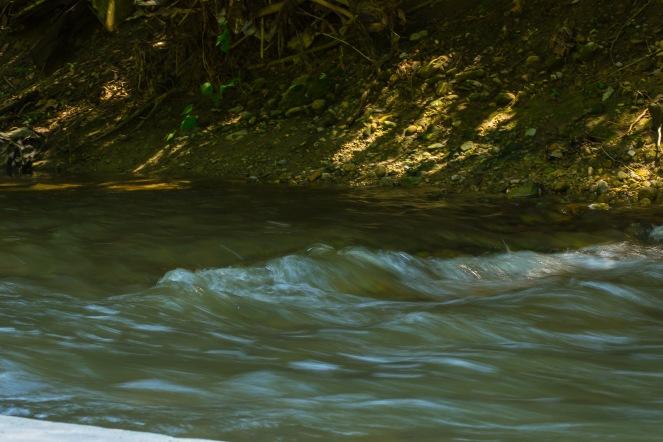 Creeking (8 of 21)